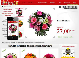 Miniature du site adaptatif floraclic.fr
